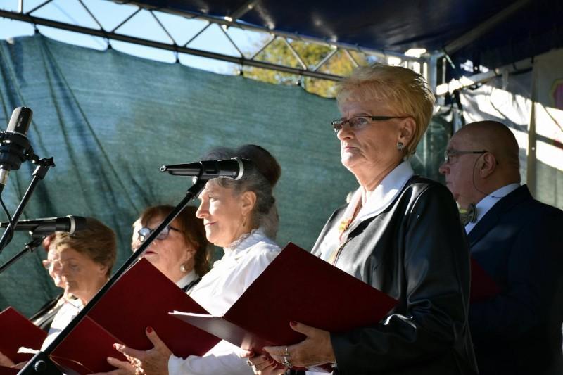 Dożynki gminno-parafilane w Teodorach