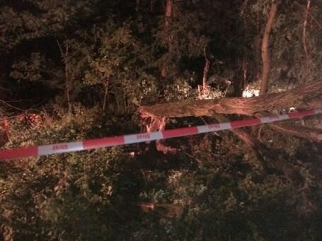 Wypadek w Korczyskach
